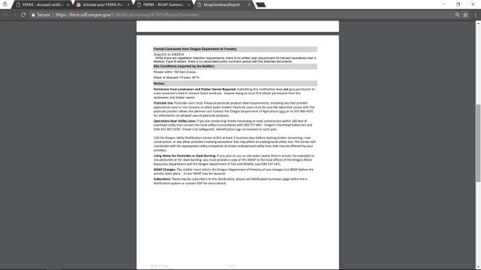 Ferns Tutorial Final-page-025