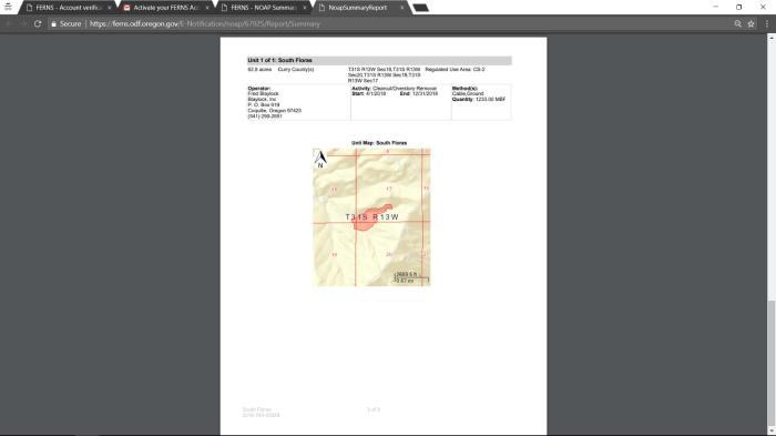 Ferns Tutorial Final-page-026